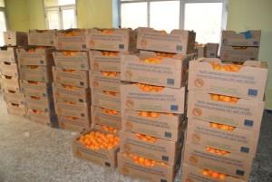 portokalia-3
