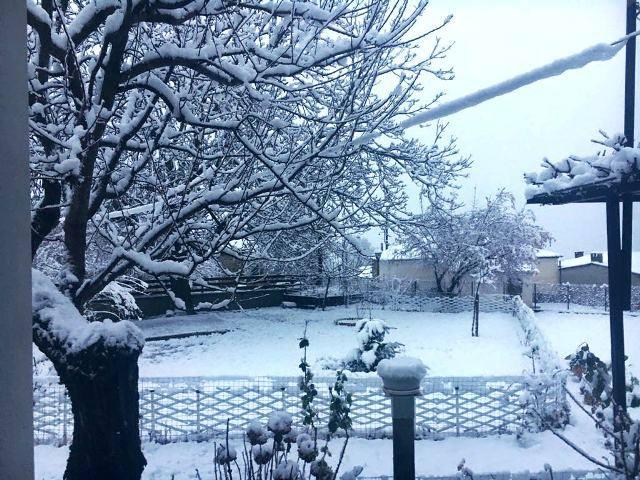 'Μπόλικο' το χιόνι στον ορεινό όγκο του Δήμου Καλαμπάκας - Συνεχίζεται η χιονόπτωση έως αυτή την ώρα