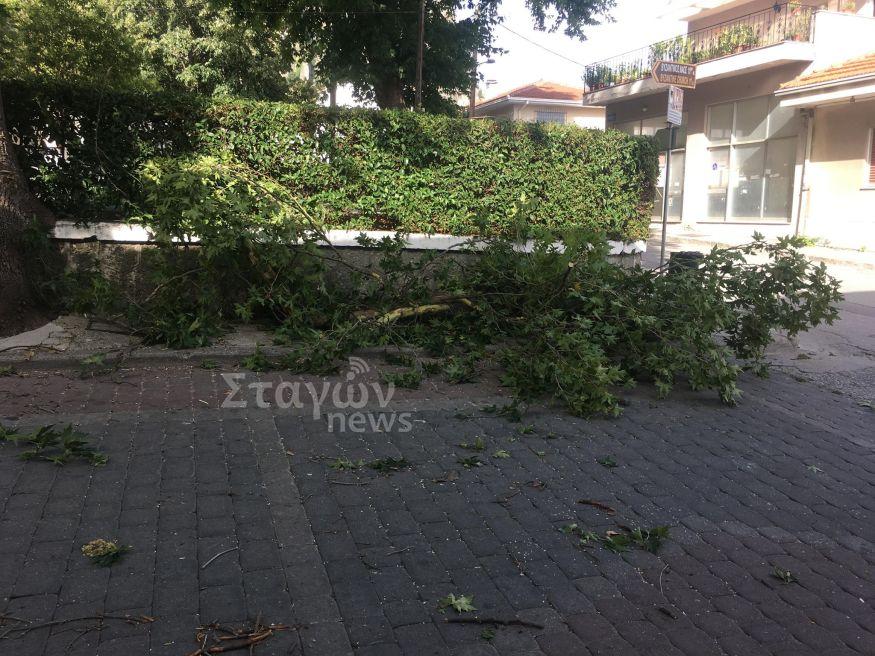Ο δυνατός αέρας έριξε μεγάλα κλωνάρια δέντρων στην Καλαμπάκα